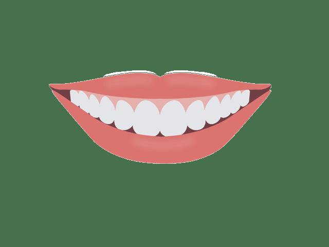 口角と歯並び